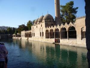 Karpfenteich in der Parkanlage Dergah - Abrahams Teich